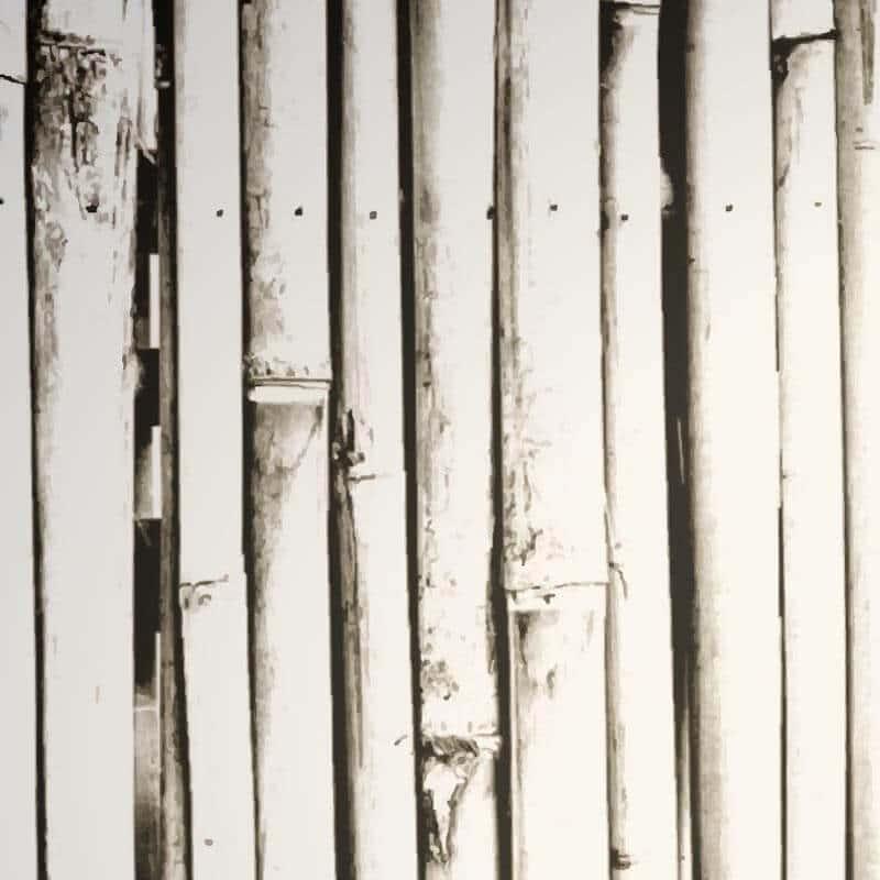 Collection de papier peint Multilés CANIS – Réf. SN1738 par LGD01