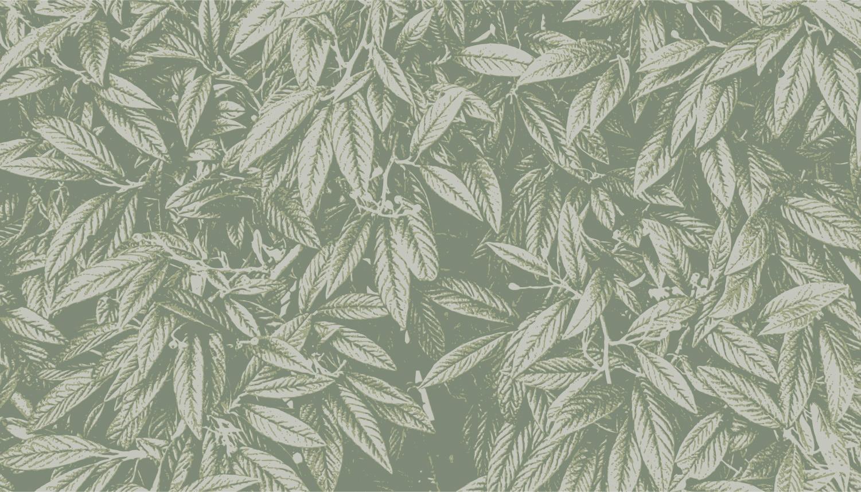 Collection de papier peint Multilés FEYAJ – Réf. FJ8124 par LGD01